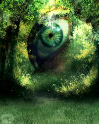Eye of the Forest by rukia-508
