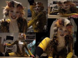 Cats Costume by R2ninjaturtle