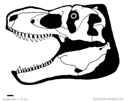 Tyrannosaurus bataar Skull Diagram [UPDATED] by LythroA