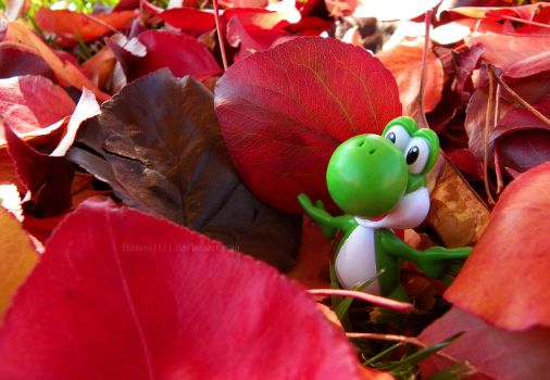 It's fall, Yoshi! by Bimmi1111