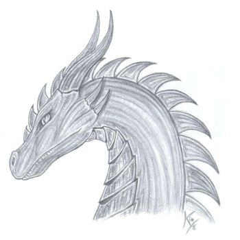 a pic for my Dragon by MetalDragoness