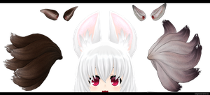 Blade and Soul: Nine tails by kaahgomedl