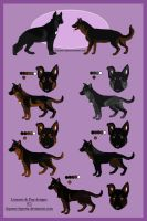 GSD Litter from Blade open by breakingfree5