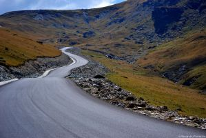 Transalpina-The Road by AlecsPS