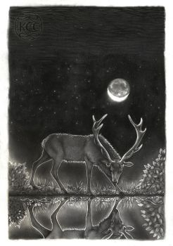 The Stag and his Reflection by KettleQuill