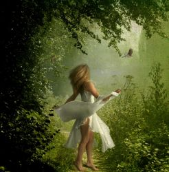 Lost in the forest by Nataly1st