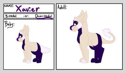 Xavier's Adult Ref *Approved* by SweetZtea