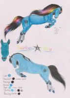 Rainbow Star Reference Sheet by Shehy