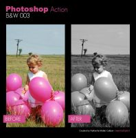 Photoshop Action - BW 003 by primaluce