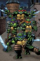 Teenage Mutant Ninja Turtles colors by seanforney