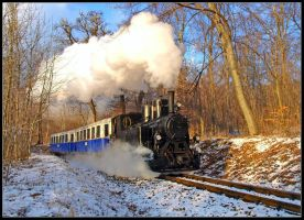 Snow and Steam by AgiVega