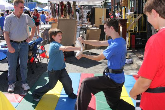Karate Day at Street Fair 8 by quietstorm2