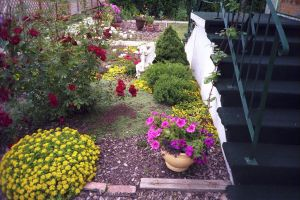 Our Side garden by fixinman