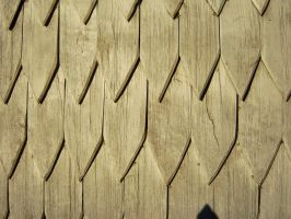 Rounded Shingles by mt-stock