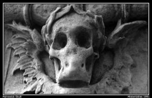 Painswick Skull by misteriddles