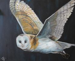 Barn Owl by NightJinx