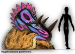 Regaliceratops peterhewsi by PLASTOSPLEEN