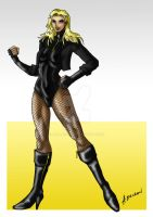 Dinah Laurel Lance - Black Canary by ADL-art