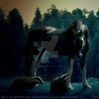 HEE || Horse Avatar |  Dimmy's Badger by skystream11