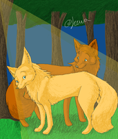 2 foxes by Joava