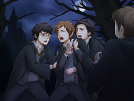 Marauders by ichan-desu