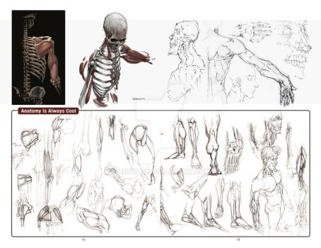 2012 Sketchbook: Evolution pages 42 and 43 by HeyCat