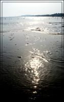 sun in the water. by steeerne