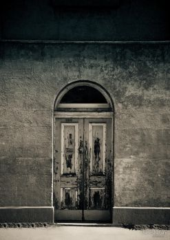 The Door by Grayda
