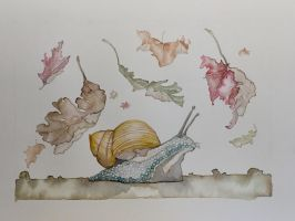 Florida Snail in Autumn  by mybuttercupart