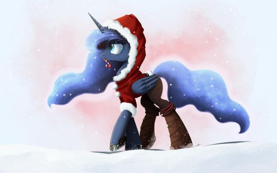 Winter Stroll by NCMares