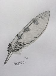 Feather by Coi-0