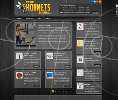 Cheshire Hornets Site by datamouse