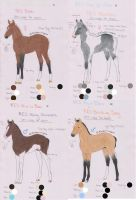 RES Lineage Foal Adopts -15 points each- CLOSED by Shehy