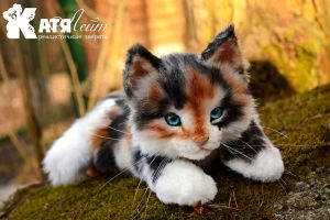 Small tricolor kitten Ray by KatiaLeyt