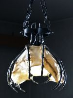 Skeletal Ceiling Light by Rajala