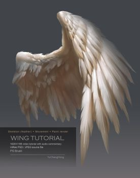 Wing Tutorial by yuchenghong