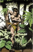 Tarzan lord of the jungle by anderson1974