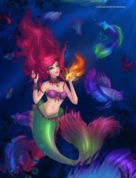 Ariel - Siamese Betta Mermaid by LilaCattis