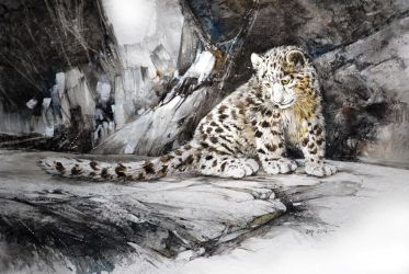 Baby Snow Leopard (Watercolor and charcoal) by Abstractmusiq