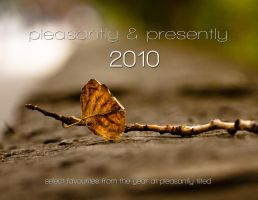pleasantly and presently 2010 by pixelmaze
