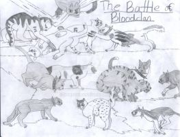 The Battle of BloodClan by Sunfall16