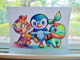 Chimchar, Piplup, and Turtwig