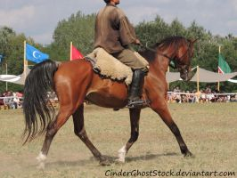Hungarian Festival Stock 125 by CinderGhostStock