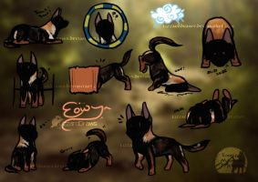 TS | Eowyn | Herding, Agility, and Obedience by LizzardDraws