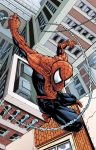 Spider-man Print Colored by DaveComics