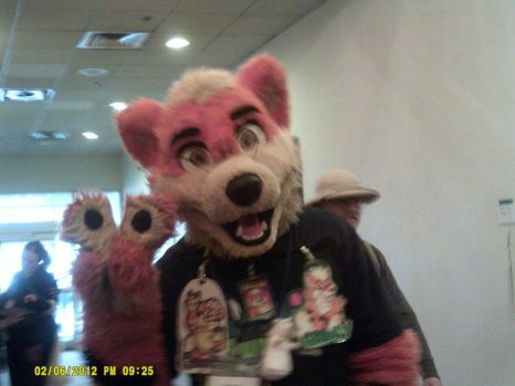 Furry Connection North 2013 Growly by UmbreonFan76