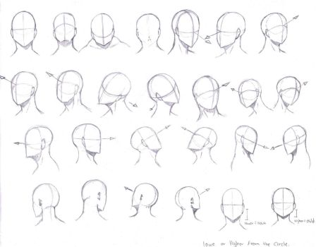 Head Angles by KCSteiner
