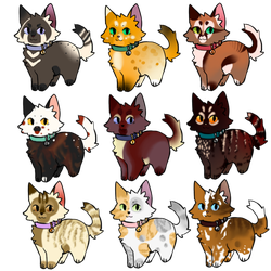 Adoptable kittens-CLOSED by LysAdopts