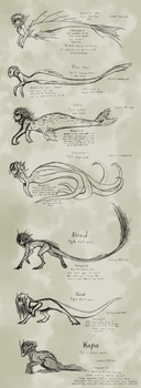 The Mer Species of Sovereign Mers by CoffeeAddictedDragon