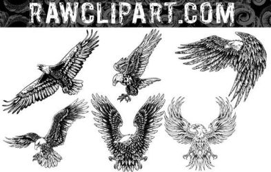 Eagles Vector Set by rawclips